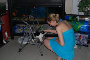 Corfu Greece cat pet store