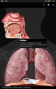 Virtual Human Body screenshot 12