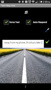 Text Response screenshot 0