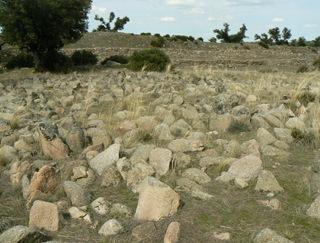 Campos de piedras hincadas en la Celtiberia