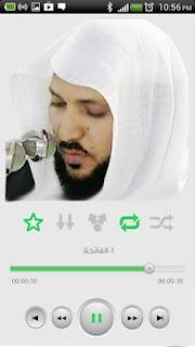 القرآن الكريم - ماهر المعيقلي screenshot 07