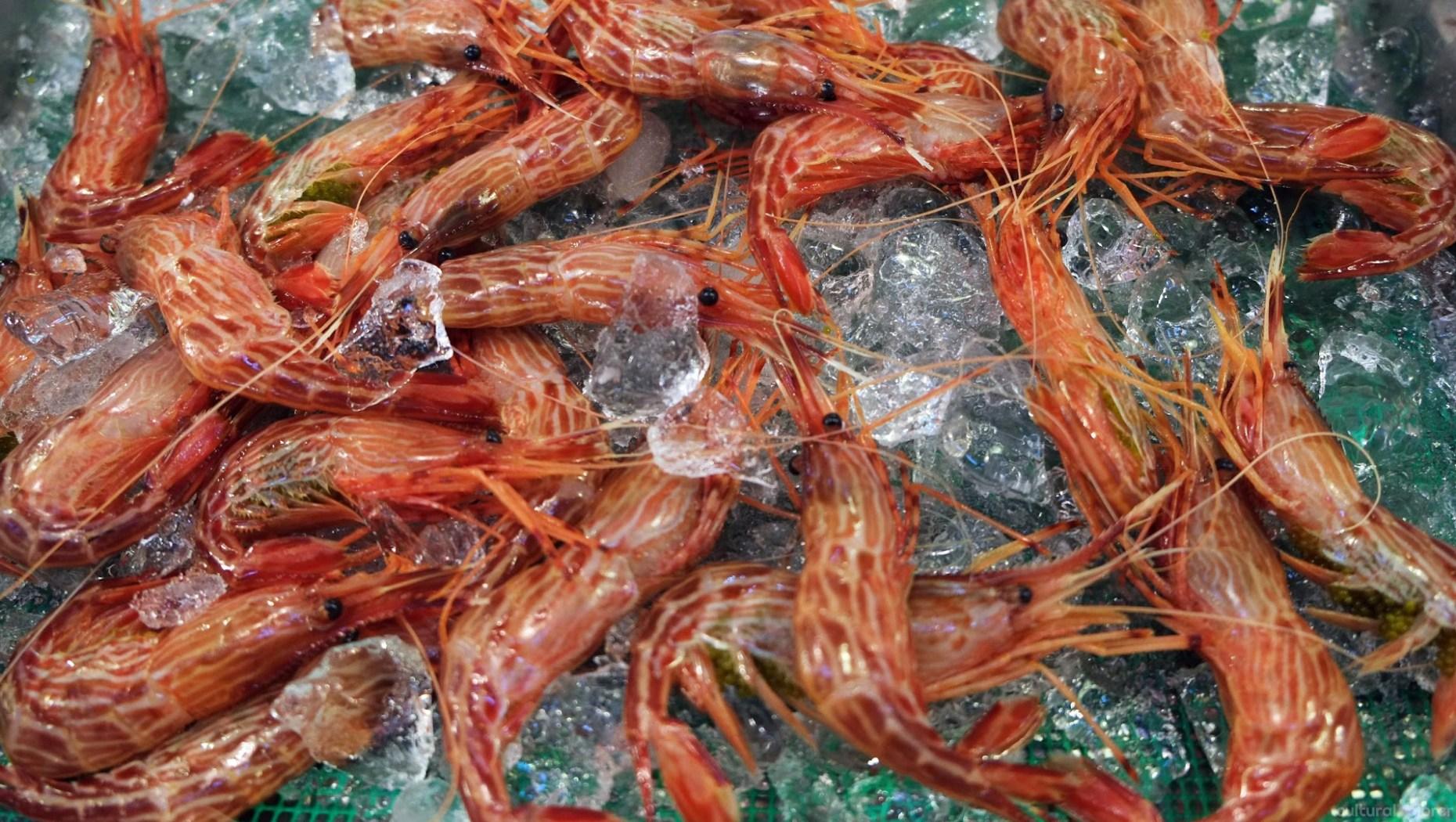 Shrimp Tsukiji