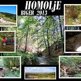 HOMOLjE - Biger - 2013