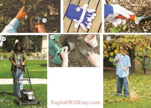 ဥယျာဉ်စိုက်ပျိုးခြင်း - အိမ်ရာ - ဓာတ်ပုံအဘိဓါန်