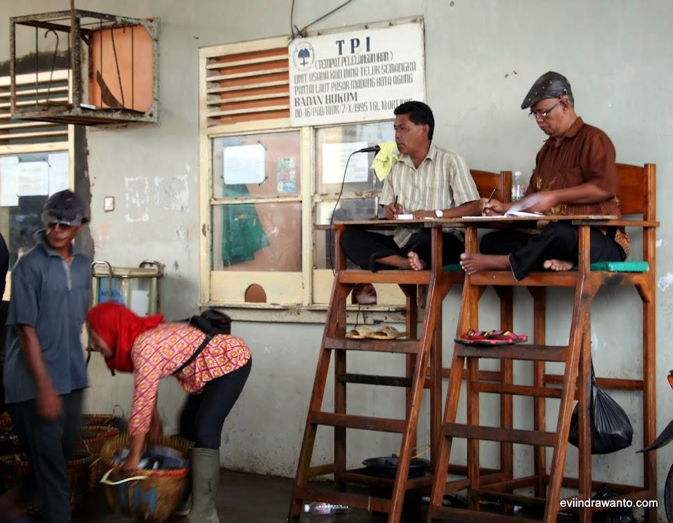 Petugas pelelangan ikan Tanggamus Lampung