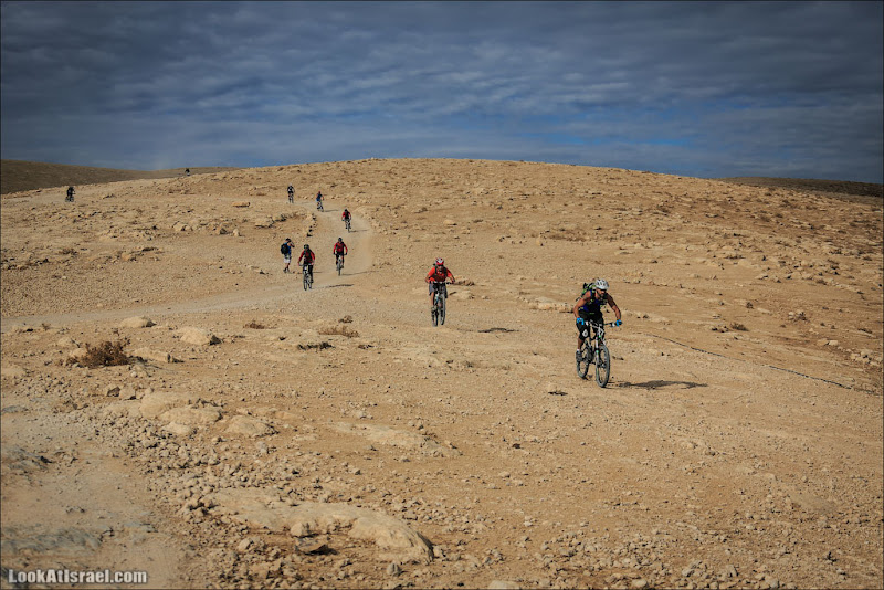 Одно фото / Покорители пустыни