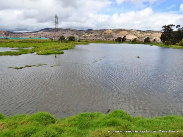 Humedal La Libélula, Complejo humedales El Tunjo
