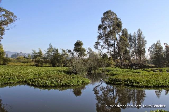 Sector por donde pasa la Av ALO sobre el humedal La Conejera