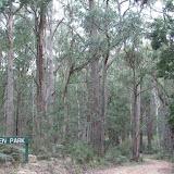 Lowden Forest Park 2008--NSW-Australia