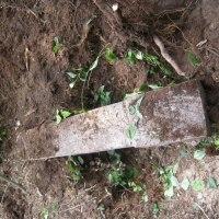 Prace na cmentarzu w Białasach [etap II, cz.I]