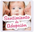 blog sentimiento de adopción, sentimiento de adopción, adopción, sentimiento, bebe