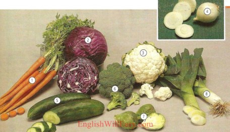 Vegetables - Food - Picture Dictionary