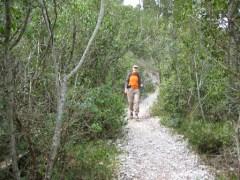The path to Calanque d'en Vau