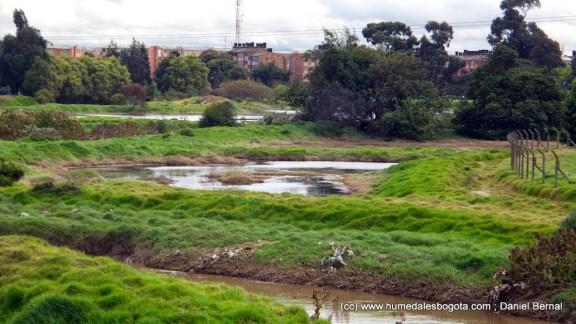 El río desbordando en varios humedales