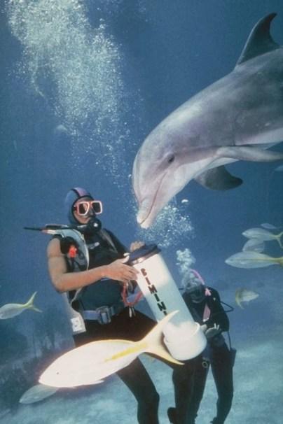 Florid a Keys Diving