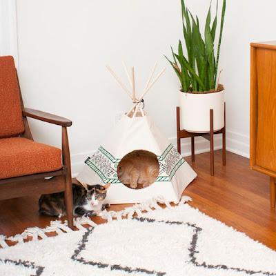 Tipis para casas de gatos.