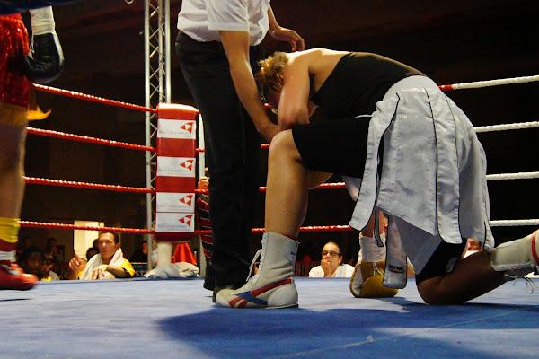 boksgala Zwevezele 11 november 2013
