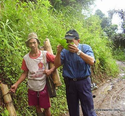 surga kecil di pojok indonesia