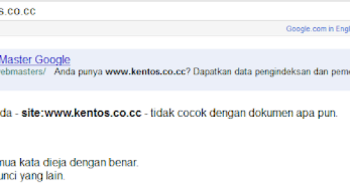 Domain Gratis Co.CC tidak di index Google