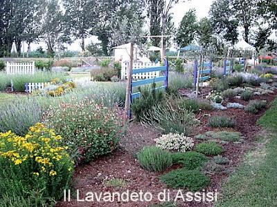 Progetti giardini online gratis Progetti giardini privati progetti piccoli giardini privati progetti balconi e terrazzi gratis progettare