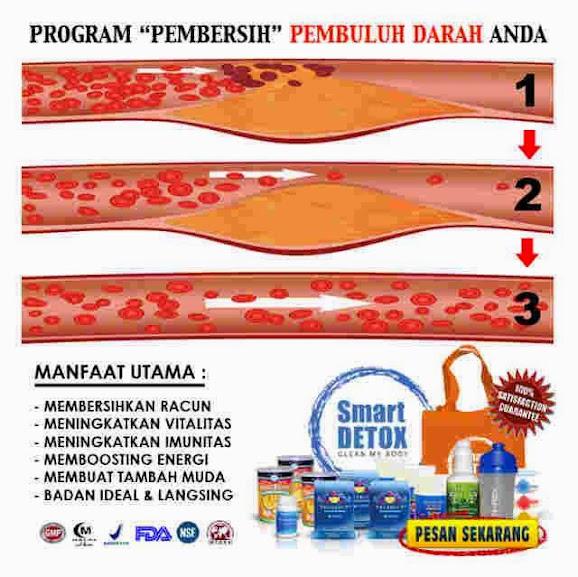 Jual Smart Detox Di Yogyakarta