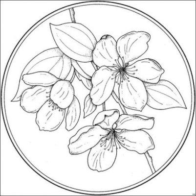 MAQUINA DE COSTURA QUE BORDA: Riscos de Flores para