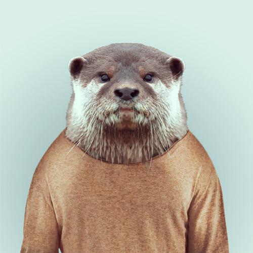 *Zoo Portraits動物時尚秀:正經八百時裝篇! 18