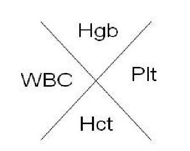Hematocrit CBC Complete Blood Count Hematocrit WBC Platelets