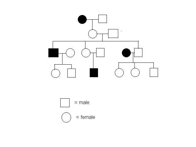 Chapin's Bio Blog: Understanding Pedigrees
