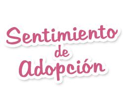 sentimiento de adopcion, blog,
