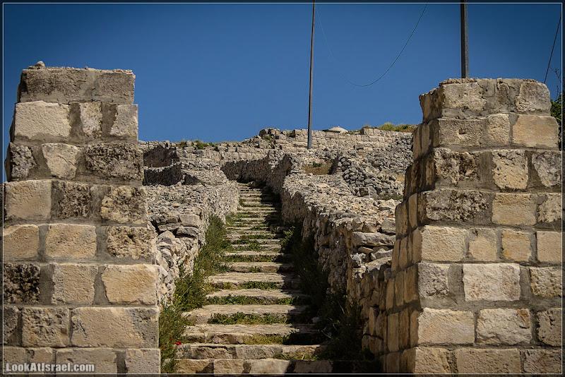 Гора Гризим - святыня самаритянская