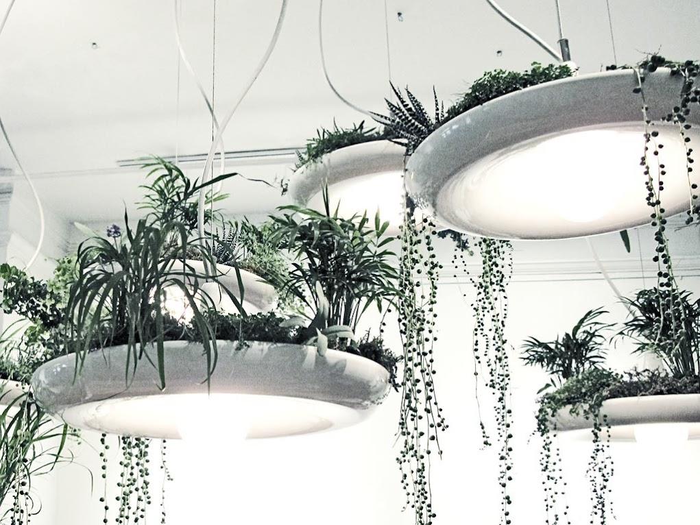 *空中花園盆栽燈具 Babylon Light:在室內享有綠色叢林包護的氛圍! 6