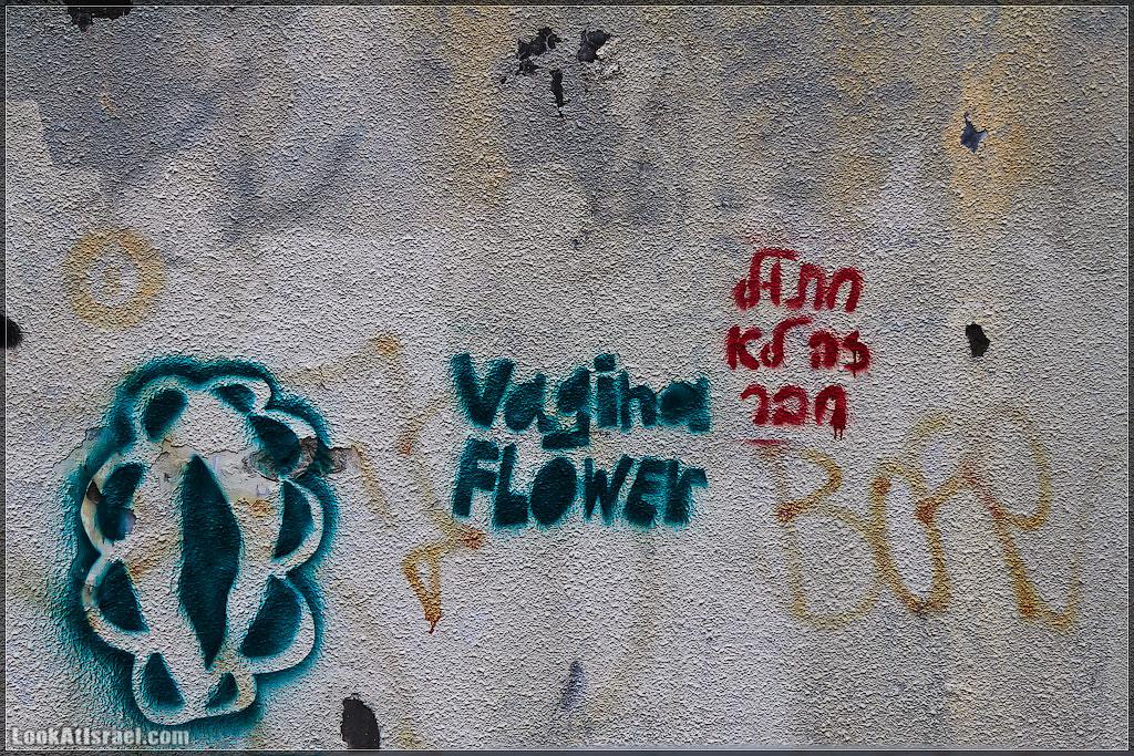 Vagina flower or חתול זה לא חבר?