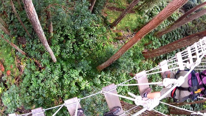 One of the bridges at Kohala Zipline course
