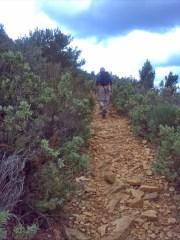 On the Crȇtes path