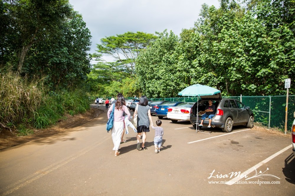 Kauai - the Garden Isle (5/6)