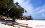 Bar on Nungwi beach