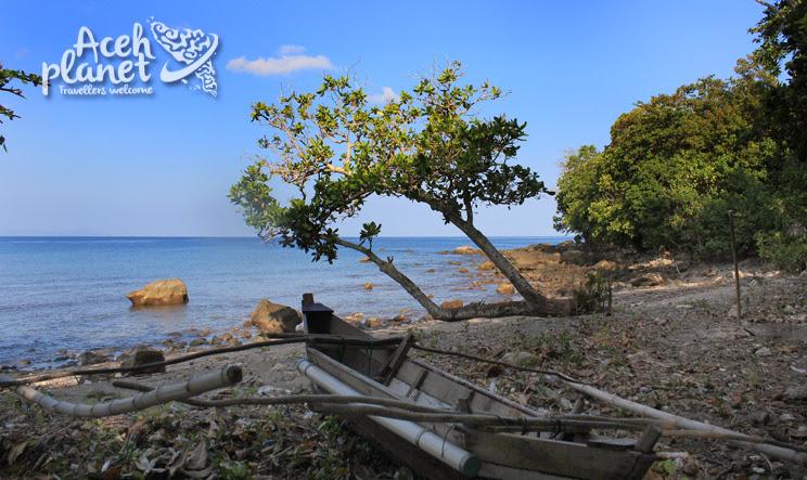 Bangau di Ujung Sumatra