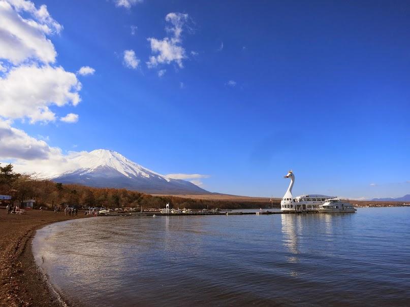 【富士五湖】山中湖の 白鳥の湖