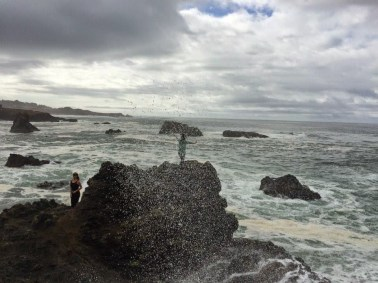 Sea Ranch ocean spray,winter, sea ranch , abalone bay , winter at sea ranch,Christmas, holiday, Abalone Bay, Sea Ranch, Vacation Rental, oceanfront