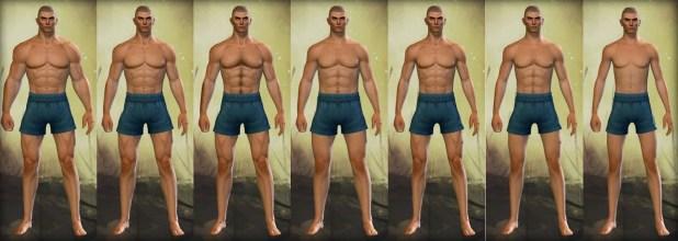 Guild Wars 2 Human Male Physique