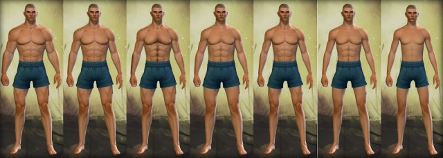 Guild Wars 2 Human Male Physique