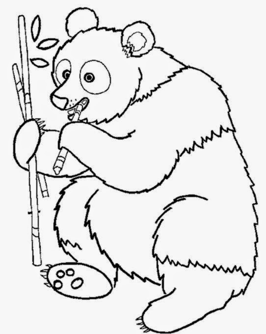 coloring pages of jungle animals
