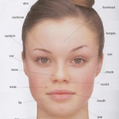 Parts Of The Eye Diagram For Kids Lutron Pico Wiring Human Body Pictures With Names - Vocabulary: Leg, Head, Face,