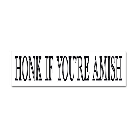 From the Mind of a Mad Man: Top 10 Amish pick up lines