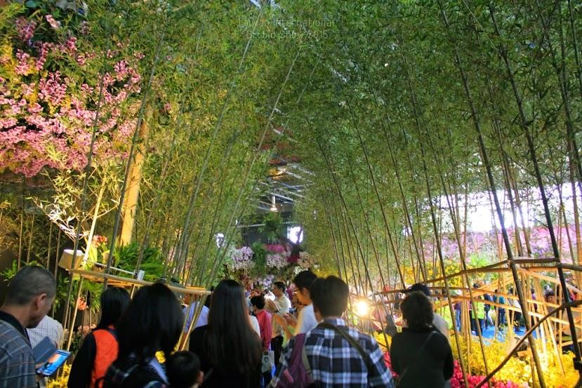 2015 台灣國際蘭展,台南國際蘭展-3