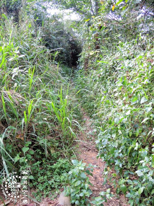 高塔旁猴探井步道