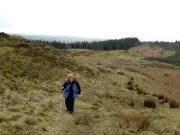 Ann approaches the top of Muncaster Fell