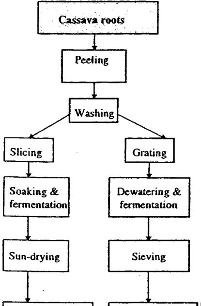 An Assessment of Cassava Processing Plants in Irepodun