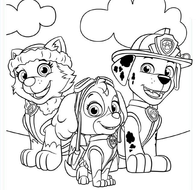Ausmalbilder Für Kinder Zum Ausdrucken Paw Patrol - Paw